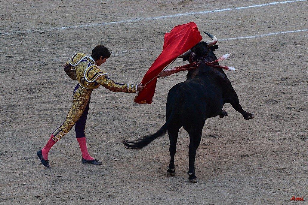 Feria-2012-Corrida-Vendredi-DSC-03061.jpg