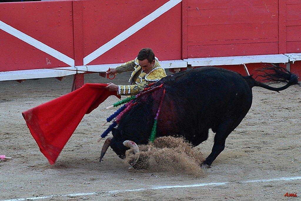 Feria-2012-Corrida-Vendredi-DSC-9832.jpg