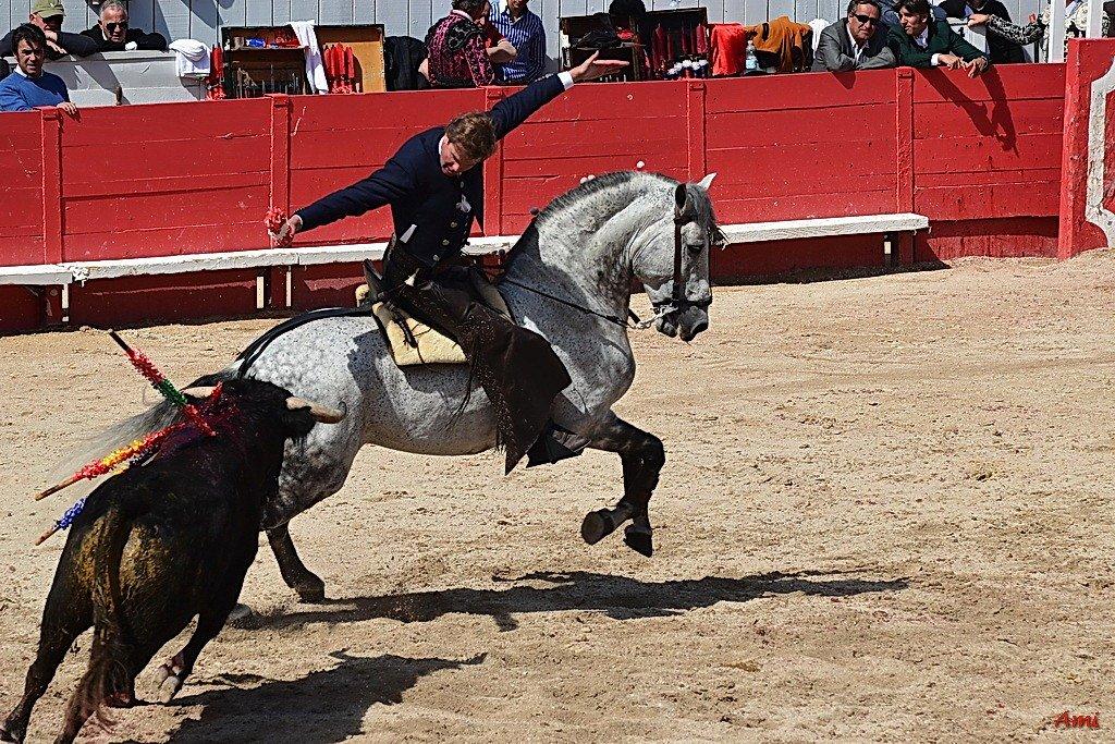 Feria-Arles-2012-DSC-1223.jpg
