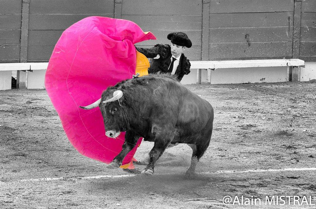 Feria-2015-Samedi.jpg