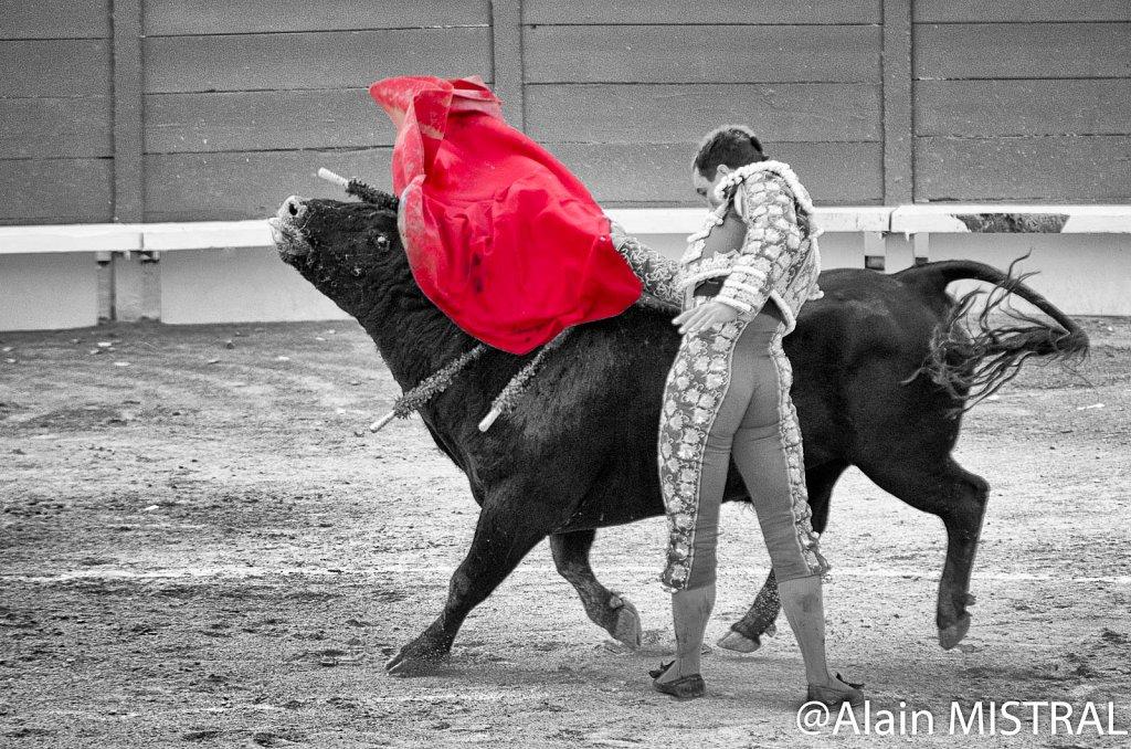 Feria-2015-Samedi-3.jpg