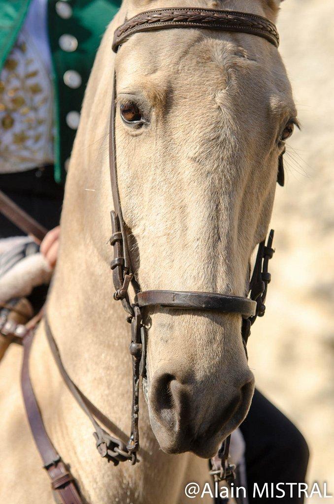 Feria-2015-Lundi-6140.jpg