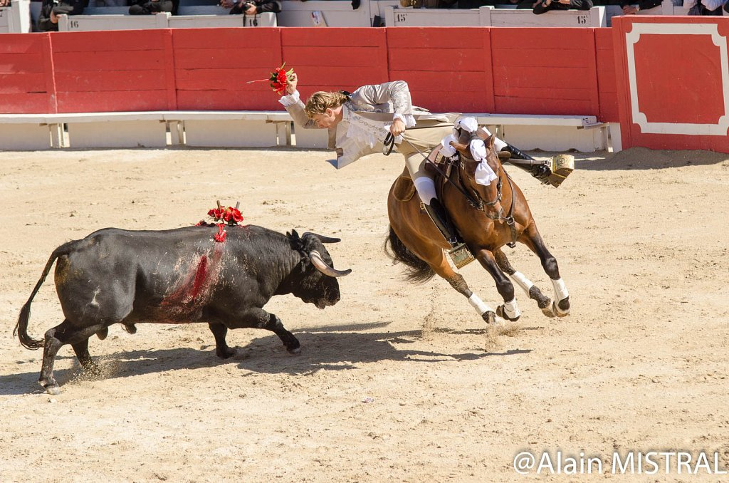 Feria-2015-Lundi-6240.jpg