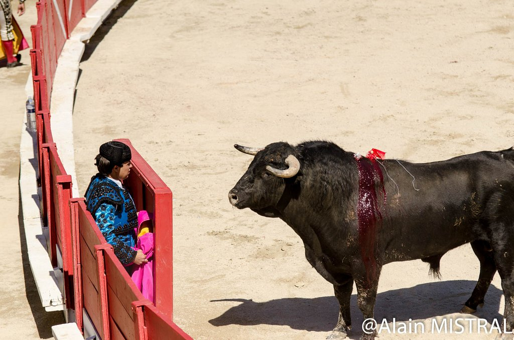 Feria-2015-Lundi-6420.jpg