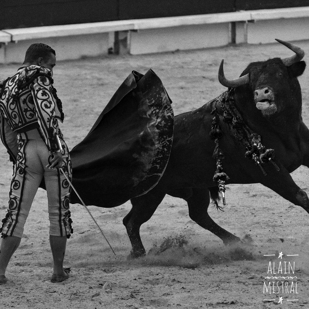 Juan Bautista - Goyesque - Arles - Sept 2016
