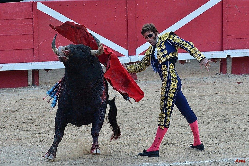 Feria-2012-Corrida-Vendredi-DSC-01221.jpg
