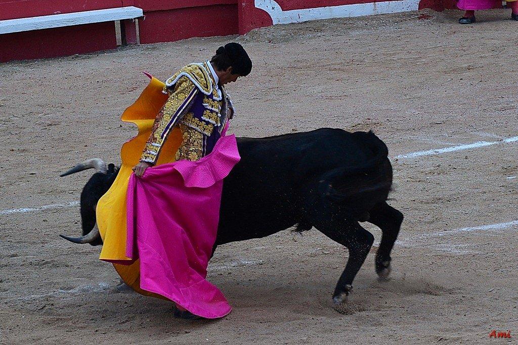 Feria-2012-Corrida-Vendredi-DSC-02771.jpg