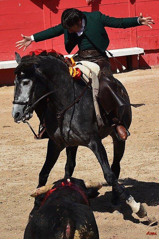 Feria-Arles-2012-DSC-1105.jpg