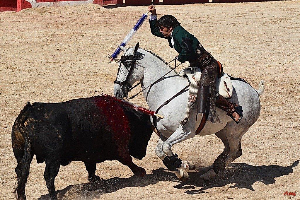 Feria-Arles-2012-DSC-1272.jpg