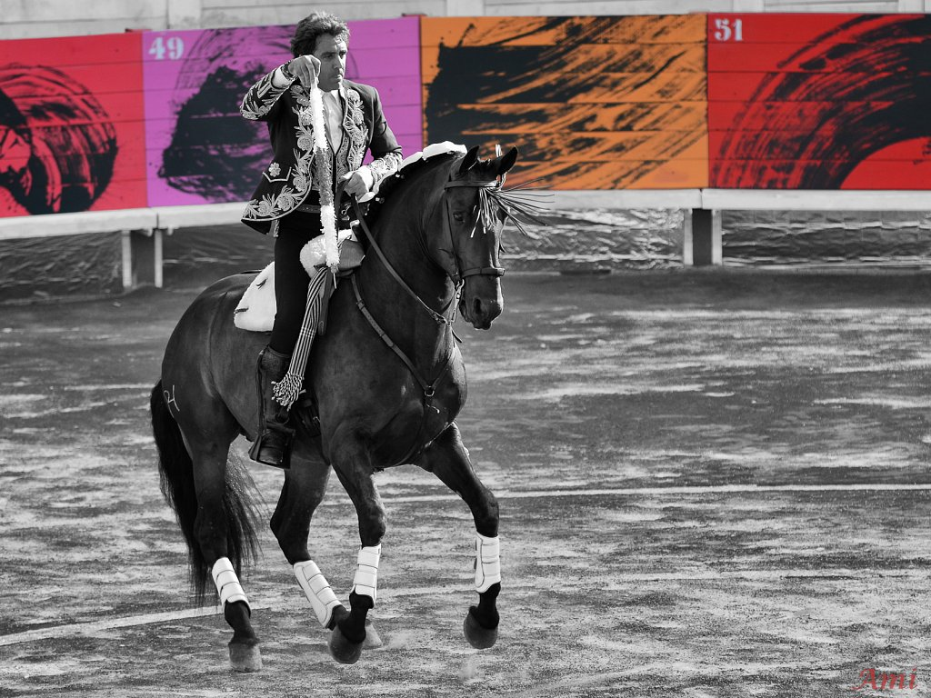 P.H Mendoza Arles Riz 2012