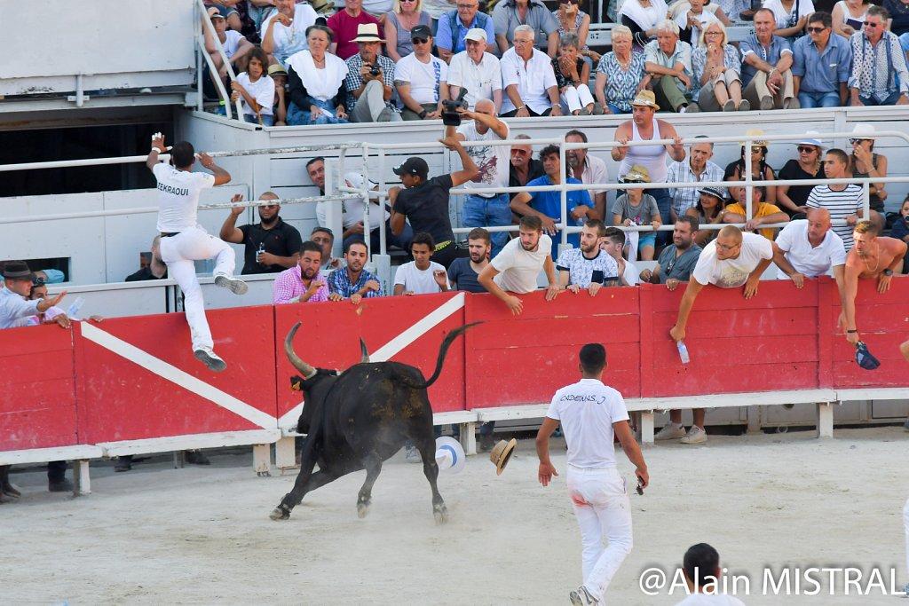 Cocarde D'Or 2016 - Arles